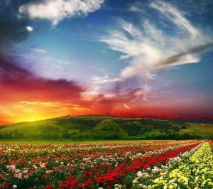 heaven image